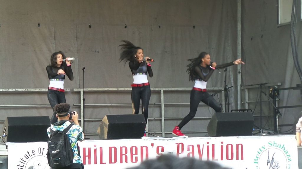 African Festival Chicago Performance